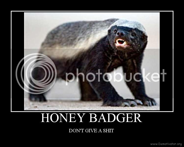 honey badger cartoon. who is honey badger randall.