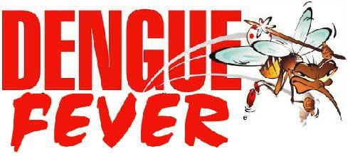 dengue fever 10 Dengue Fever Symptoms