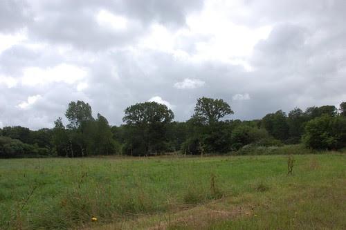 wet windy 19th July 2012