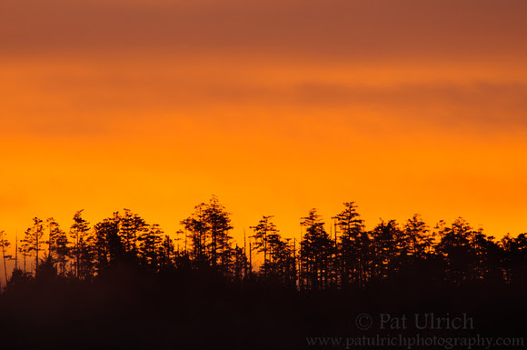 A firey sunrise over Inverness Ridge in Point Reyes National Seashore