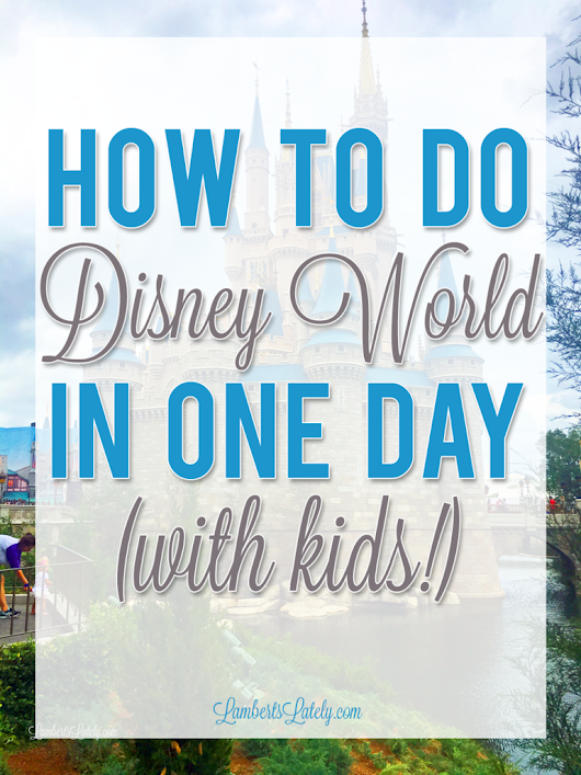 How To Do Disney World in One Day With Kids