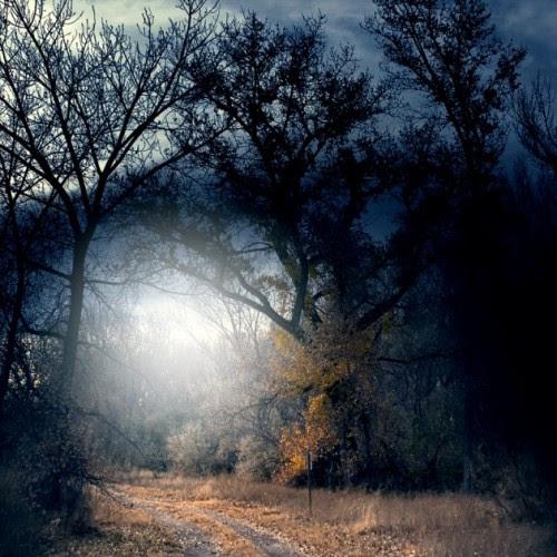 Most  Beautiful  Nature  Photography Skit Zone