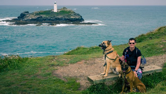"""Karen and the BSDs at Godrevy Point Cornwall"" by colinroberts"