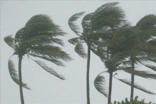 Una depresión tropical se transforma en tormenta cuando sus vientos máximos sostenidos alcanzan los 63 kilómetros por hora. EFE/Archivo