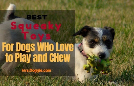 Top 10 Best Squeaky Toys For Dogs (Guide & Review) 2018