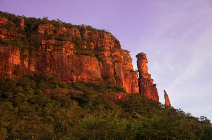 Location: Serra do Roncador, Barra do Gar?as, Mato Grosso, Brasil