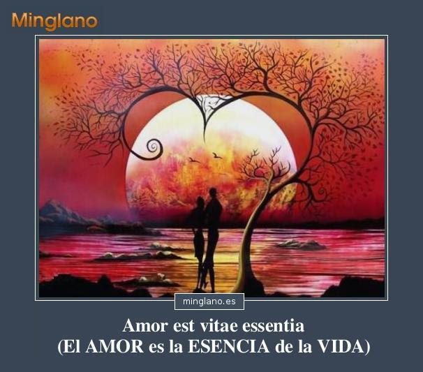 Frases De Amor En Latín Buscalogratises