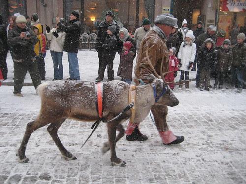 Helsingin joulukadun avajaiset by Anna Amnell
