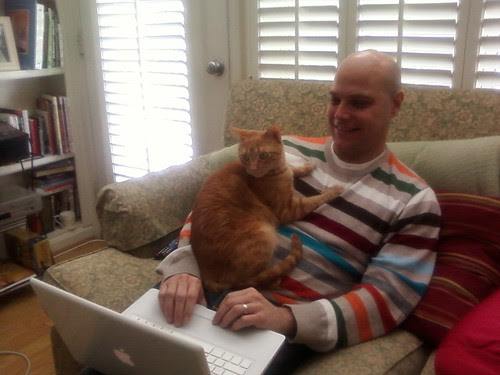 Stanley cat loves Paul at home all day