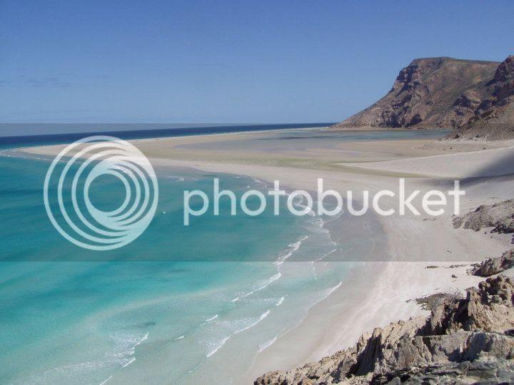 Socotra Island, Yemen, amriholiday.blogspot.com, All about paradise, holiday, travel tips, and tourist resort, Dragon Blood Tree, (Dracaena cinnabari), dihamri beach