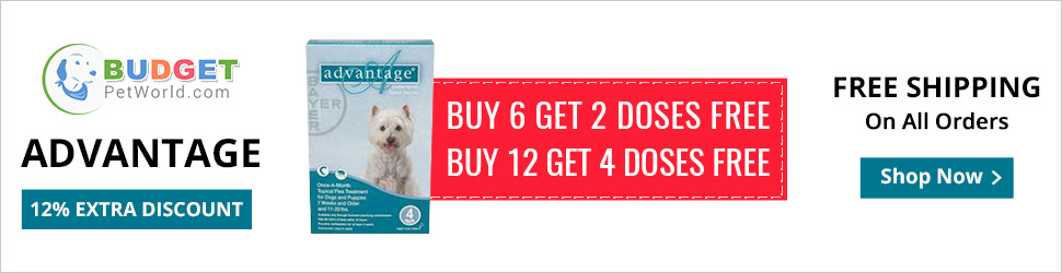 Advantage is an efficient flea preventive for canines. This topical solution provides complete protection to dogs against adult fleas, flea larvae and chewing lice.