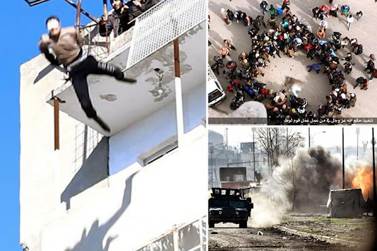 Iraqi troops 'liberate' infamous Mosul tower block where ISIS thugs threw gay men to their deaths - as terror group digs in for bloody battle to re-take the city