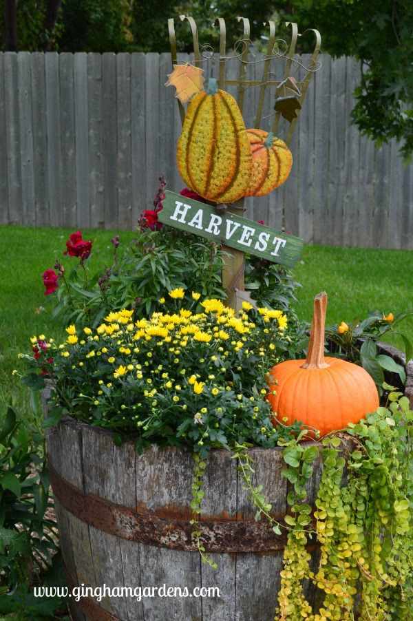 Tips on Transitioning Container Gardens to Fall