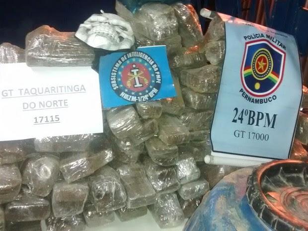Maconha enterrada dentro de barris em Taquaritinga do Norte (Foto: Divulgação/ Polícia Militar)