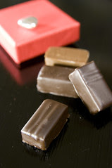 Les Quatre Saisons Japonaises, Franck Fresson, Salon du Chocolat 2009 Tokyo, Shinjuku Isetan