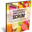 Executive Guide to Scrum