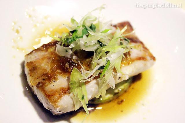 10 Dorado Fish