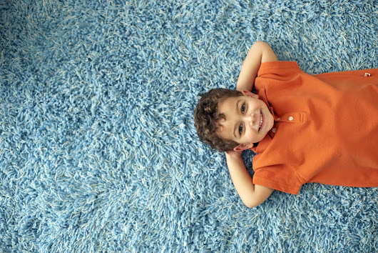 How Much Do Professional Carpet Cleaning Services Cost -
