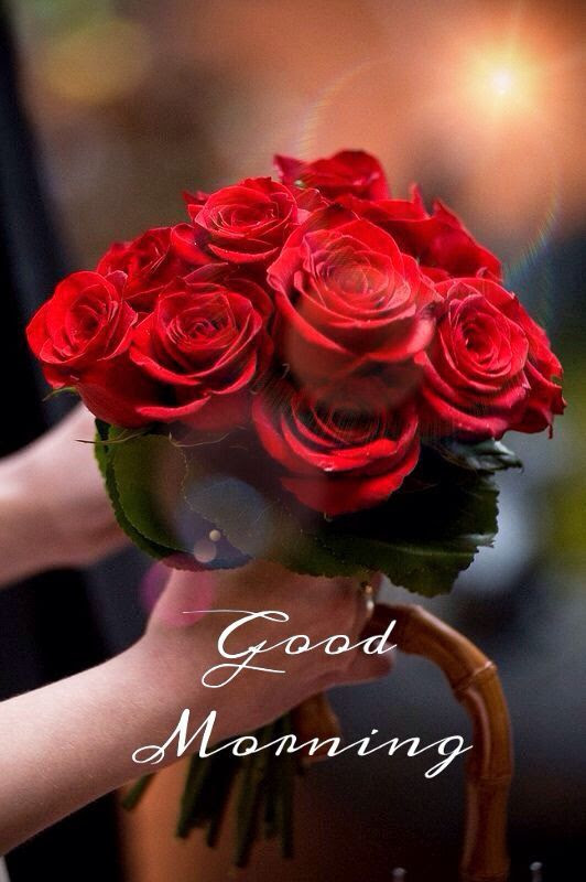 Good Morning Red Roses Pictures Photos And Images For Facebook