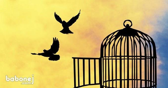بين الحرية والهوى