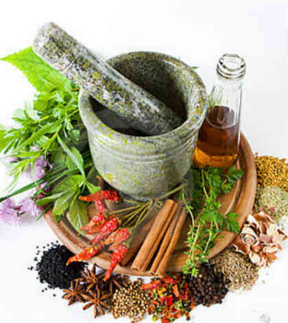 Excellent Spices & Herbs to Stimulate Hair Growth - Annapurna