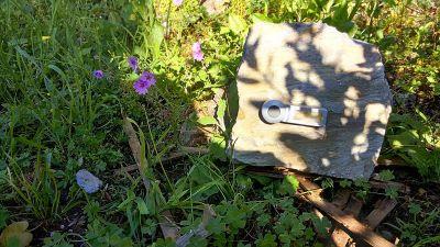 Nature's door bell