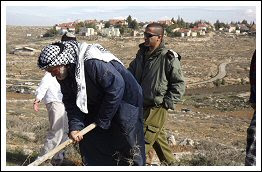 File Photo of Dec 22, 2012: 3 Palestinians arrested while working their land close to illegal Israeli settlement of Suseya