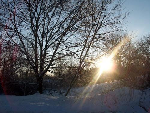 Sunrise_12011f