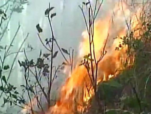 Wildfire engulfs forests in J-K after Uttarakhand and Himachal