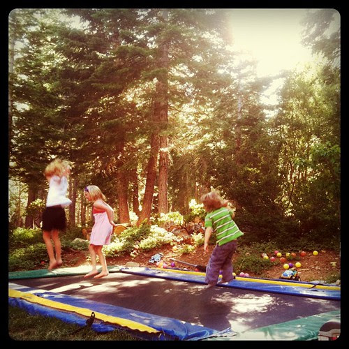 Neighbor's in-ground trampoline FTW!