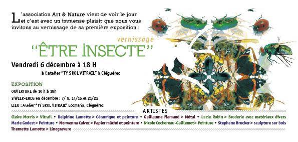 """""""ETRE INSECTE"""" une exposition collective à Cléguerec"""