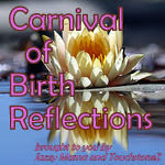 Carnival of Birth Reflections
