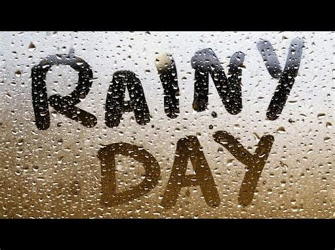 happy rainy day whatsapp status video  royal feel