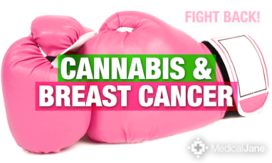 Cannabinoids May Help Treat Breast Cancer