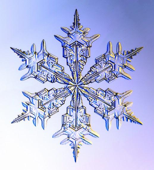 Kenneth Libbrecht's Snowflake