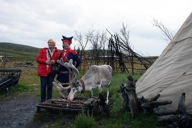 IMG_4851 reindeer photo op
