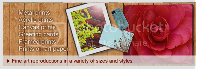 photo prints-canvases-promo-w-border_zpsc870dfe4.png
