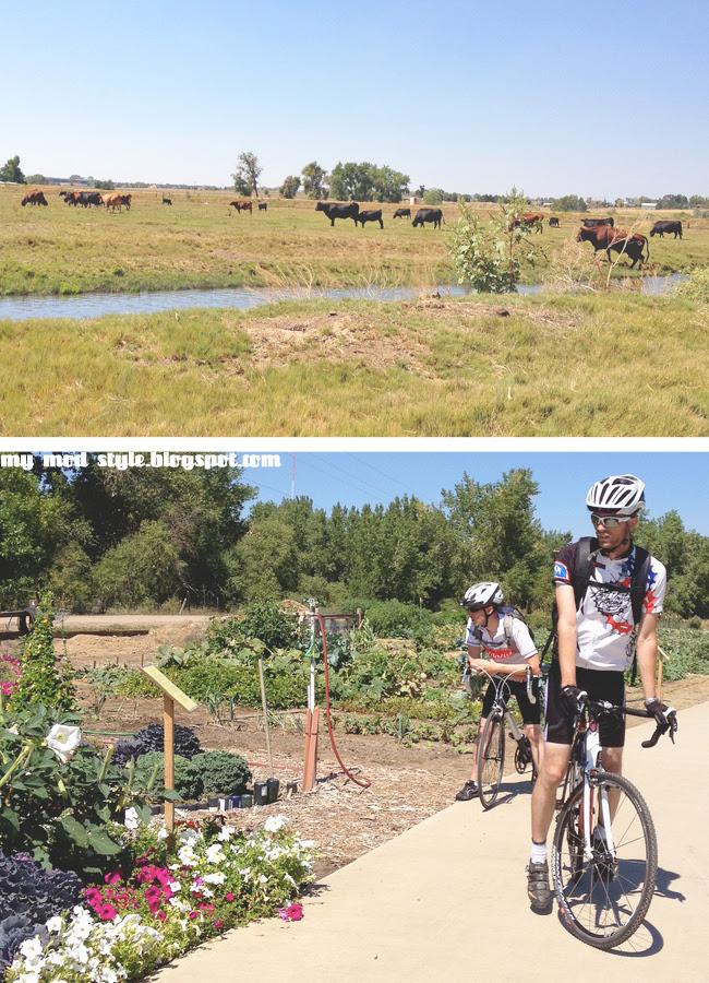 Biking2 9.8.12