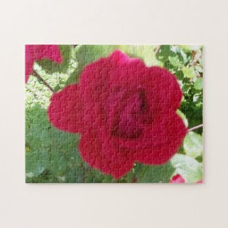 Beautiful Red Rose Jigsaw Puzzles