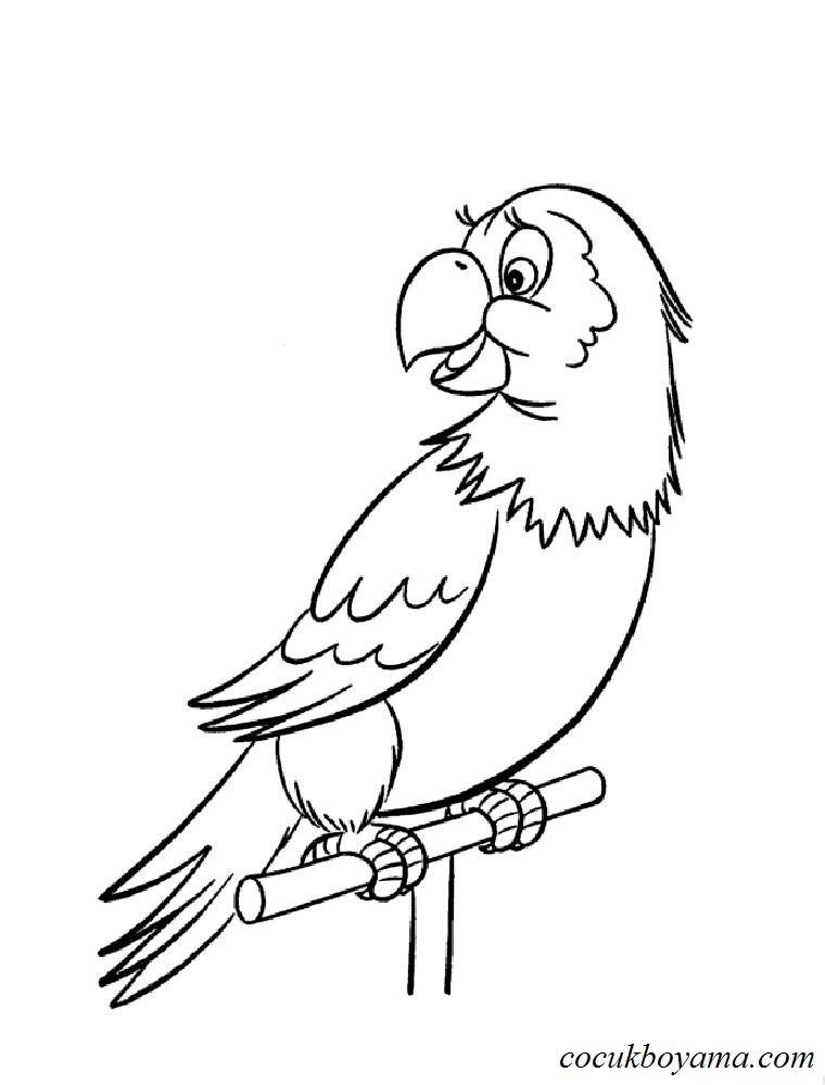 Muhabbet Kuşu 4 ücretsiz Boyama Resimleri