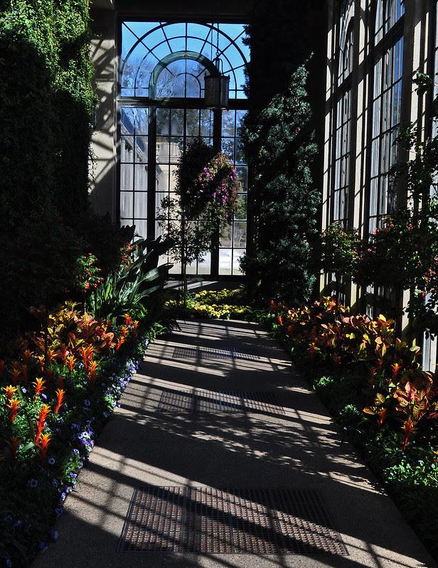 Main Conservatory