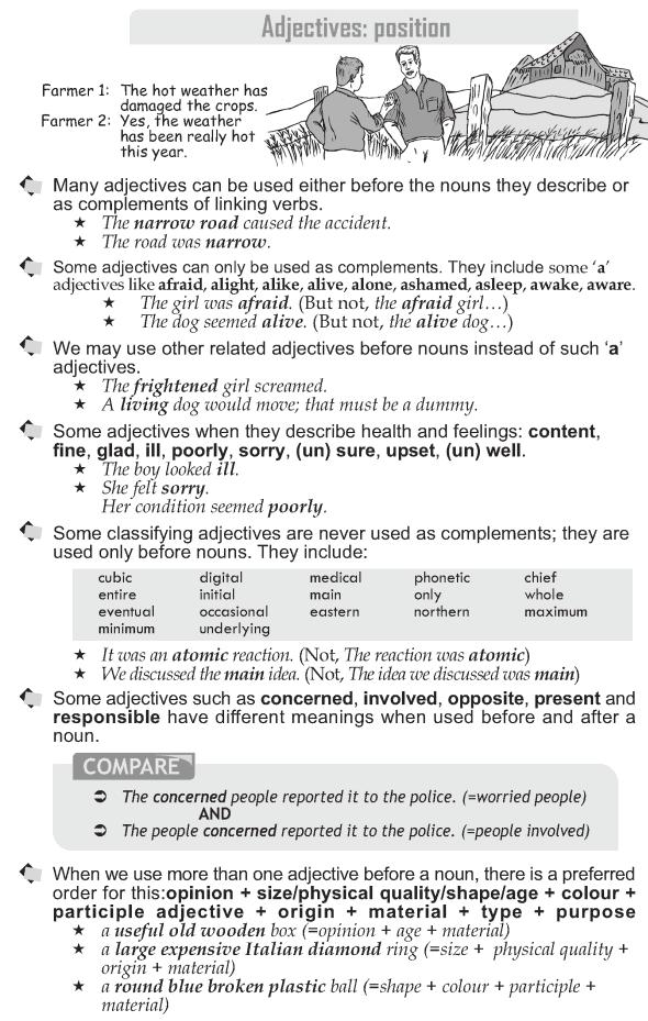 Grammar Grade 10 Grammar Lesson 19 Adjectives Position