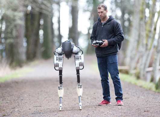 cassie the bipedal robot can walk, squat and be dropped