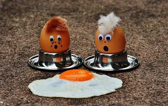 egg-1364869__340.jpg