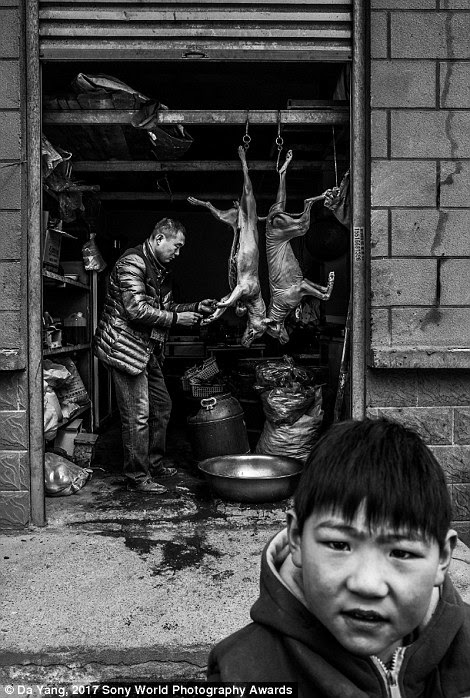 A child plays in Kaifeng, China, by the warehouse of a man who kills dogs to sell