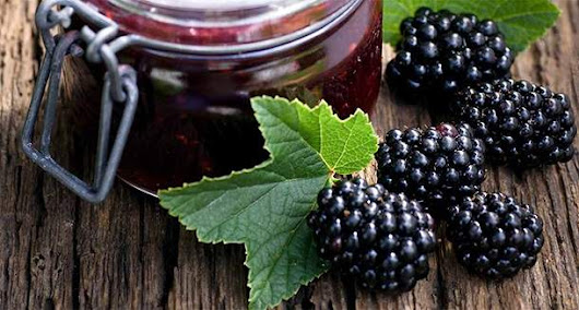 Find Out the Healing Properties of Blackberry Leaf Tea | | Health Digezt