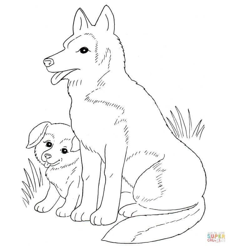 Disegno Di Mamma Cane E Cucciolo Da Colorare Disegni Da Colorare E
