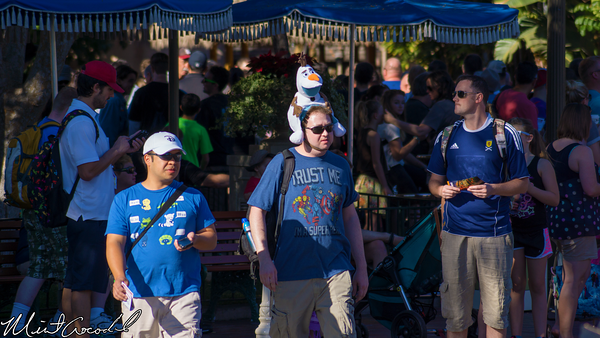 Disneyland Resort, Disneyland, Main Street U.S.A., Christmas Time, Olaf, Hat