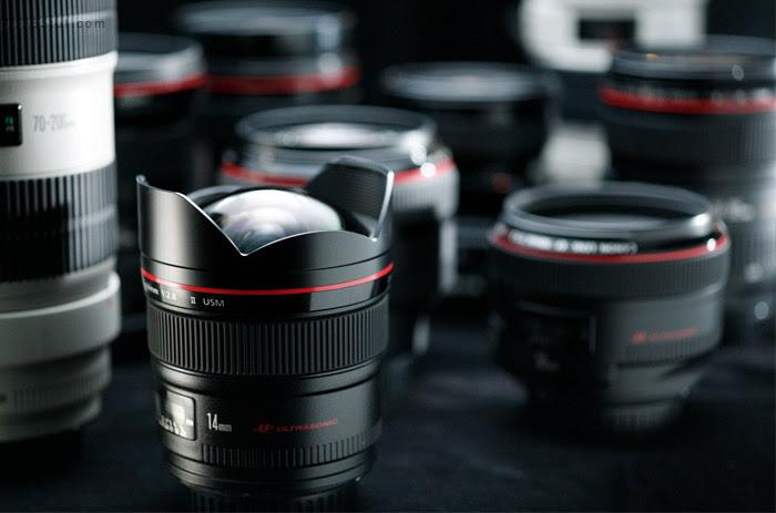 Lens_Cat_Wide_L