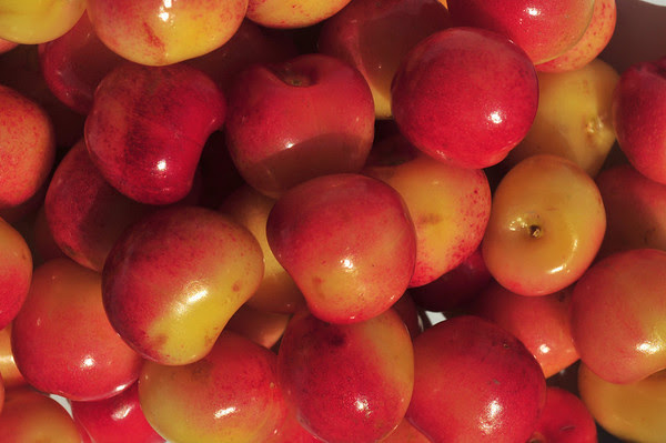 Cherry-O!
